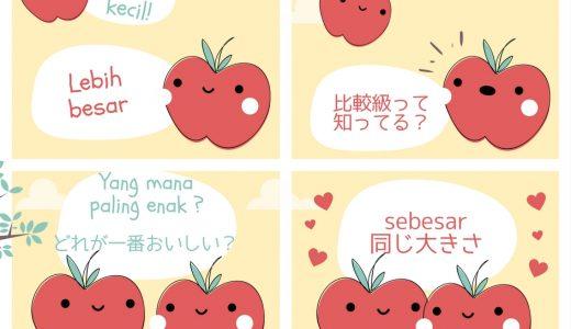 見れば理解!インドネシア語の比較表現~比較級の「lebih」や最上級の「paling」~