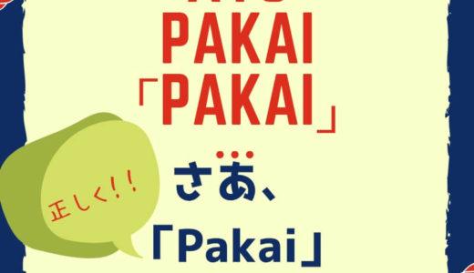 Pakai は確かに便利。だけど、どこまで使える!?