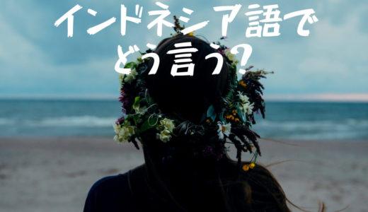 【中級問題ke-39】「視野」ってインドネシア語でどう言う?