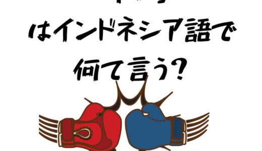 【中級問題ke-42】「争い」ってインドネシア語で何て言う?