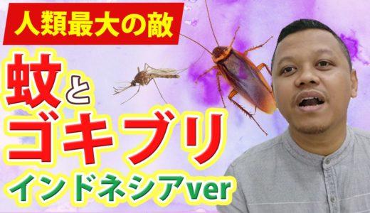 Hari ke-122 Jakarta sudah masuk musim nyamuk